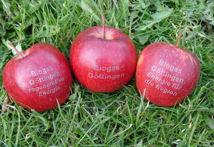 Apfel-Biogas
